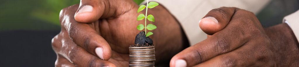 BIS-Intern_Investis